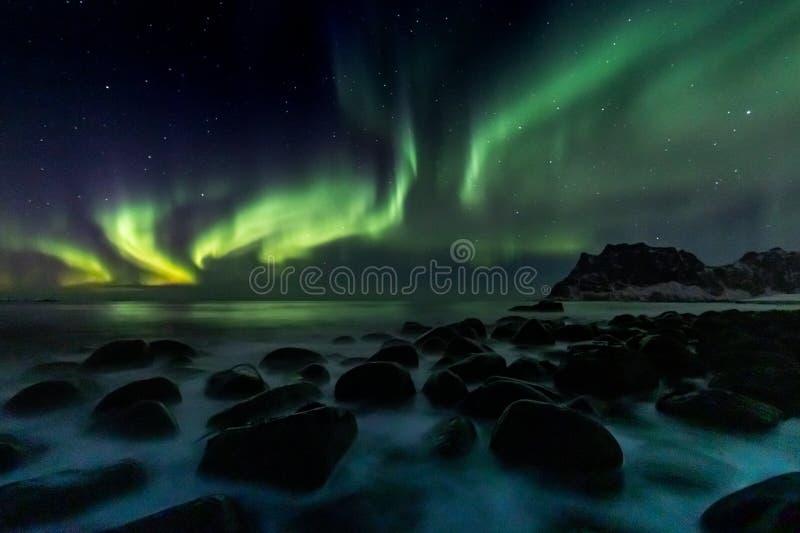 Lumières du nord à la plage d'Utakleiv sur les îles de Lofoten image libre de droits