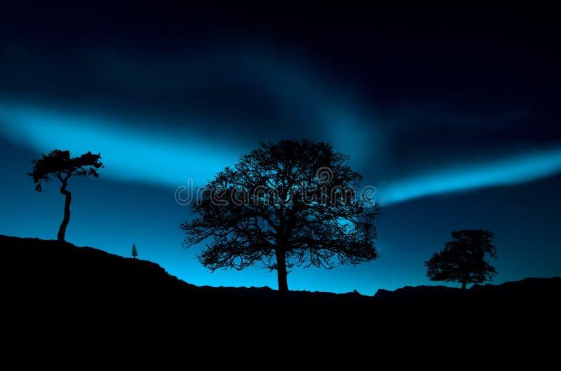 Lumières du nord image stock