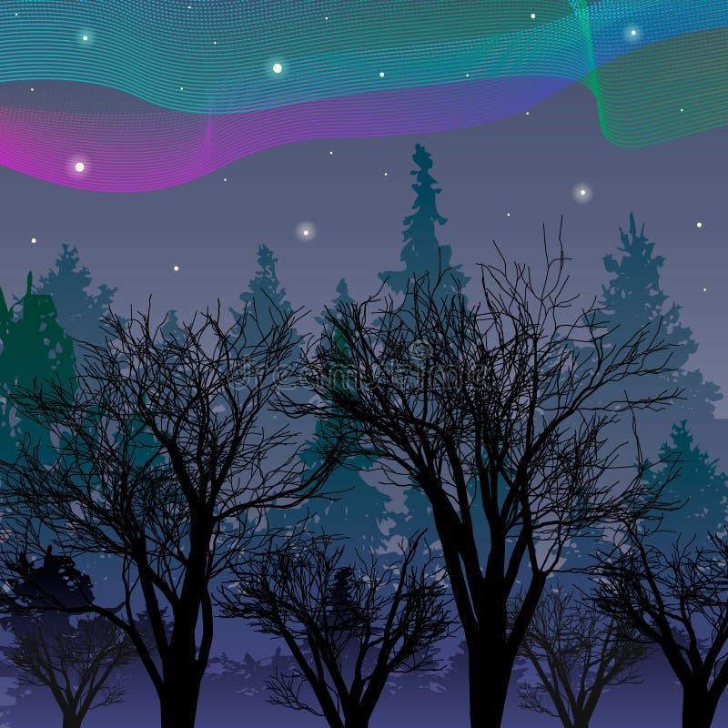 Lumières du nord au-dessus d'illustration d'Aurora Vector de forêt de nuit illustration de vecteur