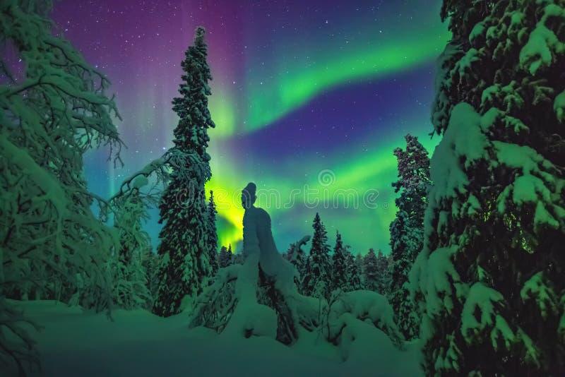 Lumières du nord au-dessus de la Laponie photographie stock libre de droits