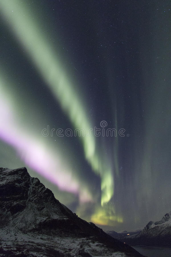 Lumières du nord au-dessus de la montagne arctique couverte dans la neige photos libres de droits