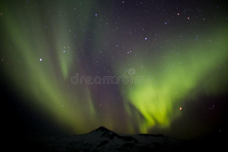 Lumières du nord au-dessus de montagne en hiver en Islande image stock