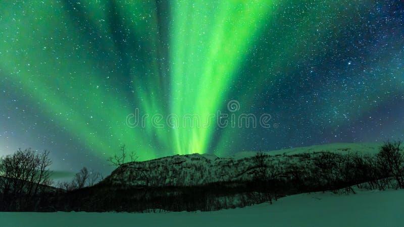 Lumières du nord Aurora Borealis au-dessus d'une montagne photo libre de droits