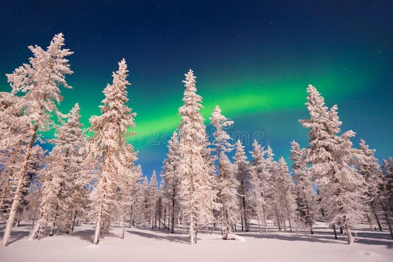 Lumières du nord, Aurora Borealis en Laponie Finlande image libre de droits