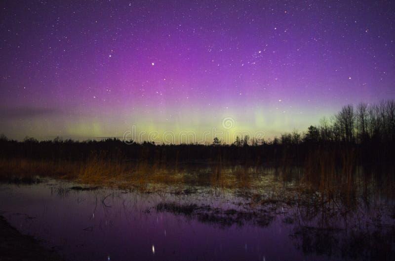 Lumières du nord colorées avec la réflexion sur l'eau images libres de droits
