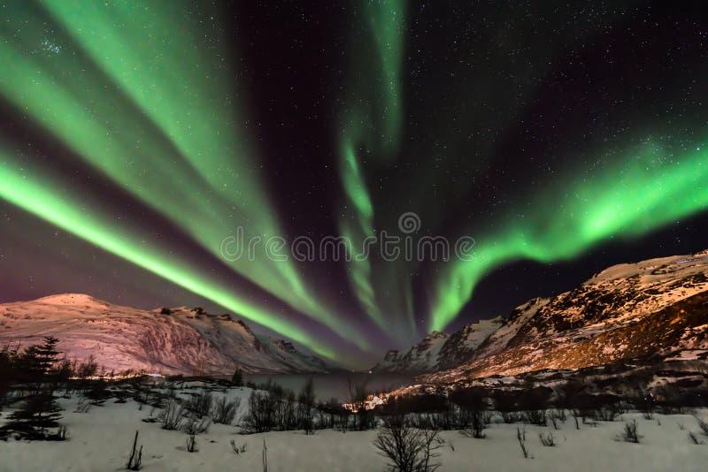 Lumières du nord d'Aurora Borealis en Norvège du nord photo stock
