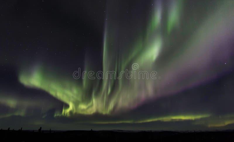 Lumières du nord en Alaska images libres de droits