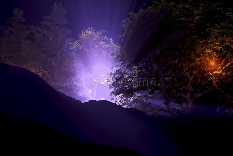 Lumières fantasmagoriques la nuit illustration stock