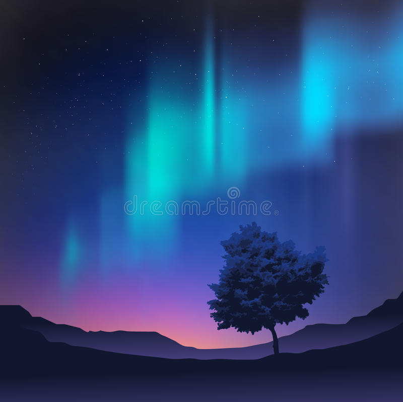 Lumières nordiques illustration stock