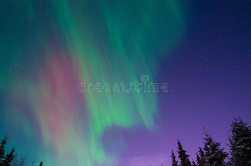 Lumières nordiques image stock