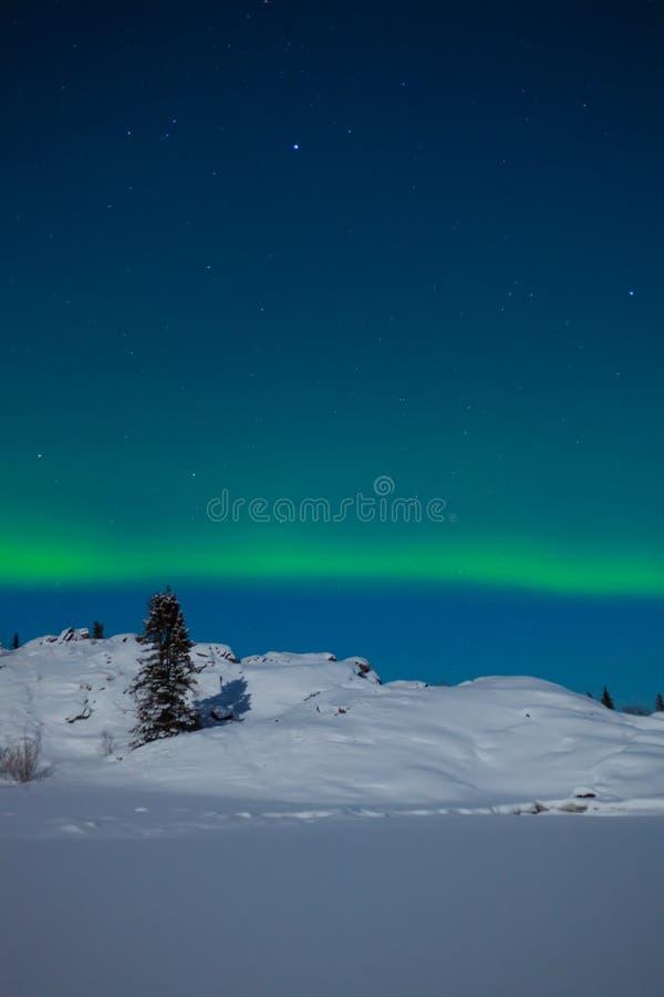 Lumières nordiques (borealis de l'aurore) image libre de droits