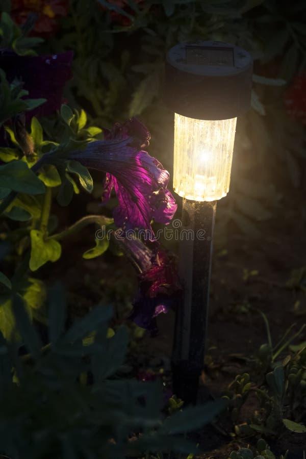 Lumi?re de jardin de LED photographie stock libre de droits
