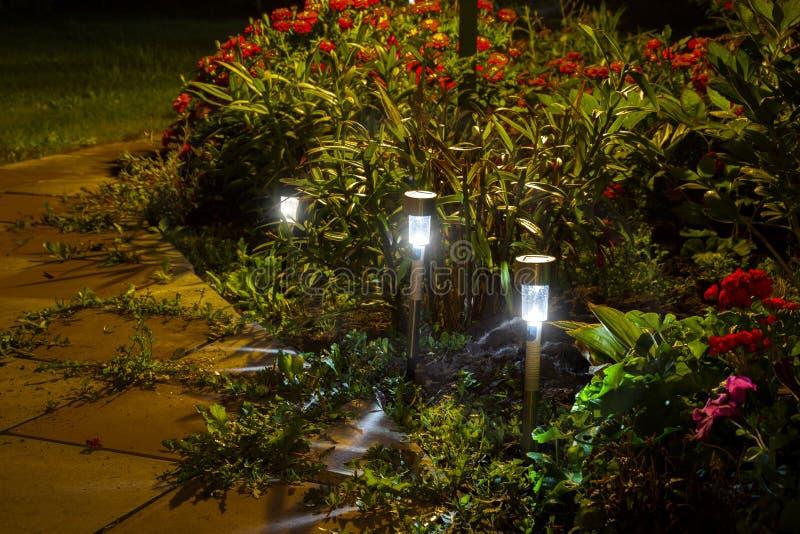 Lumi?res de jardin de nuit photo stock