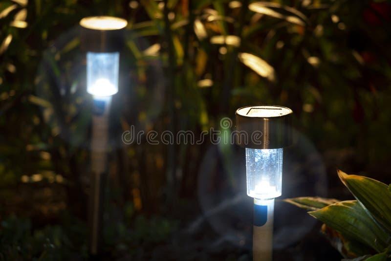 Lumi?res de jardin de nuit photographie stock