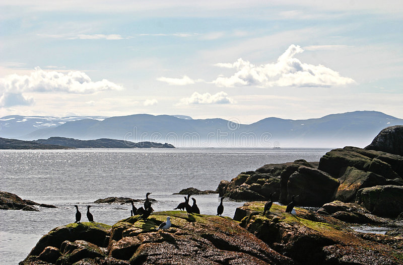 Luminosità sull'oceano artico fotografie stock libere da diritti