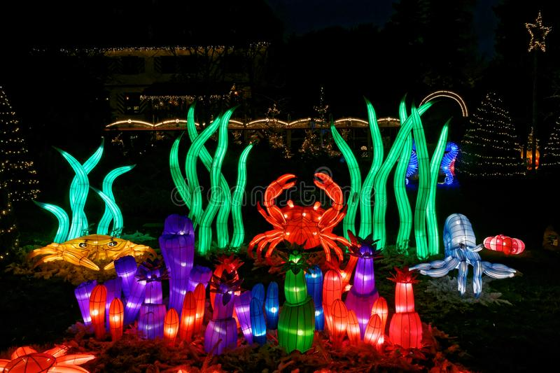 Luminous underwater cartoons in park at Christmas by night stock photos