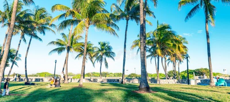 Lummus Park on a sunny day, Miami Beach, Florida - USA. Lummus Park and palm trees on a sunny day, Miami Beach, Florida - USA royalty free stock photography
