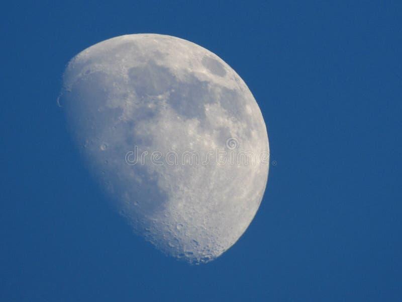 Luna al crepuscolo fotografia stock libera da diritti