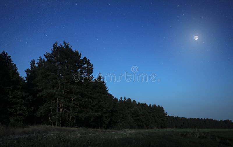 Luna alta nel cielo fotografia stock