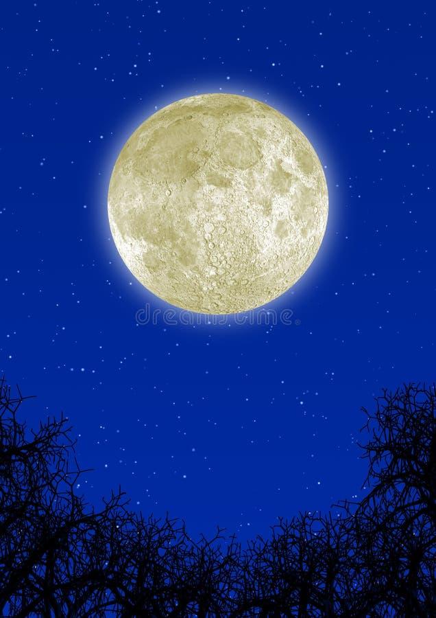 Luna altamente detallada imágenes de archivo libres de regalías