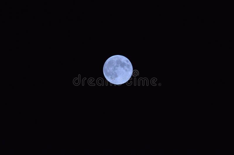 Luna blu immagini stock libere da diritti