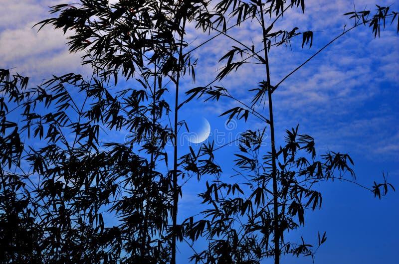 Luna de disminución con el cielo azul y nublado imágenes de archivo libres de regalías