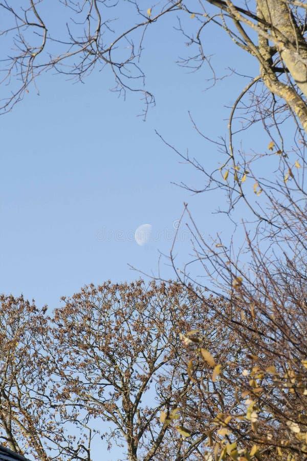 Luna de la luz del día imagenes de archivo