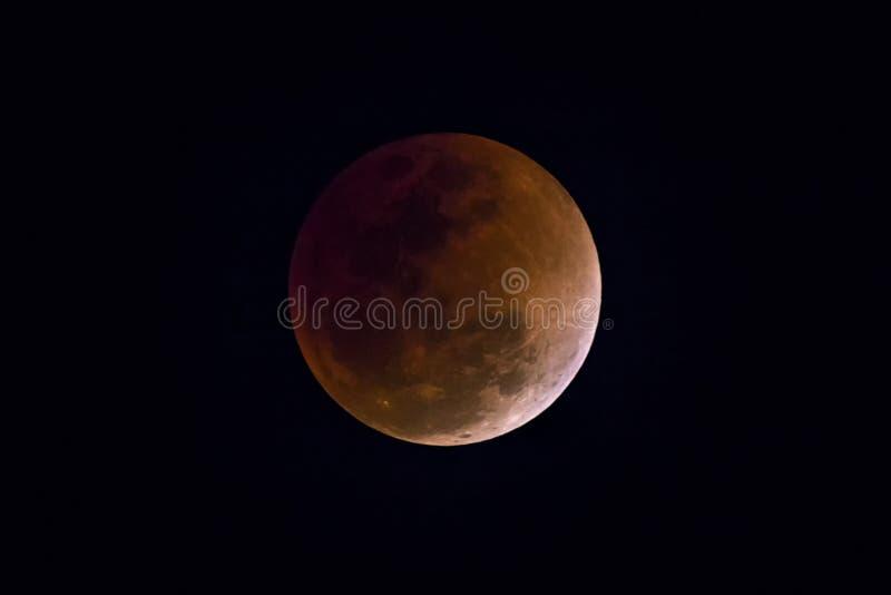 Luna de la sangre en el eclipse lunar y también una luna azul y luna estupenda fotografía de archivo libre de regalías