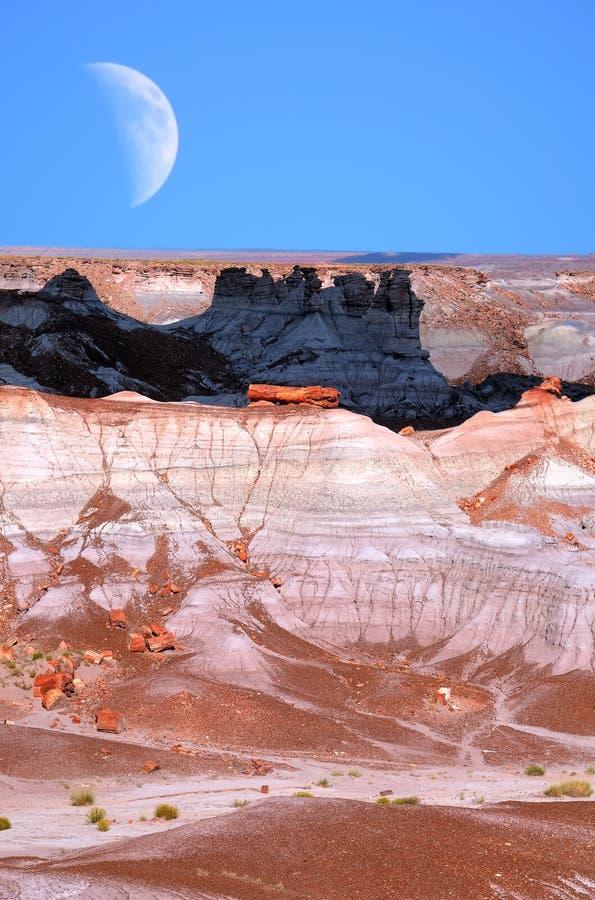 Luna del deserto fotografie stock libere da diritti