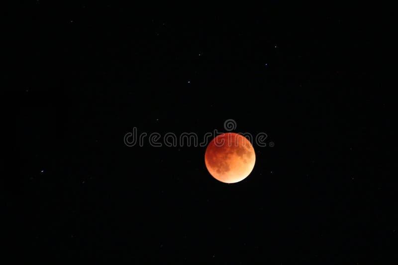 Luna del sangue fotografia stock