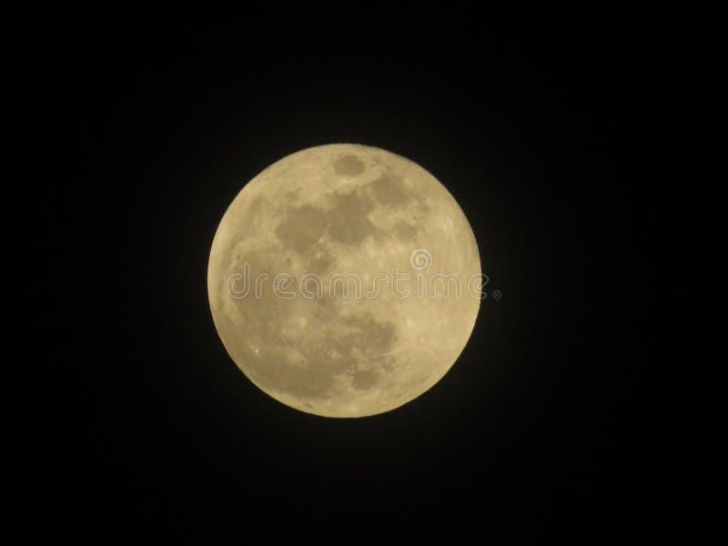 Luna del sangue Luna e ombre scure gialle piene immagine stock
