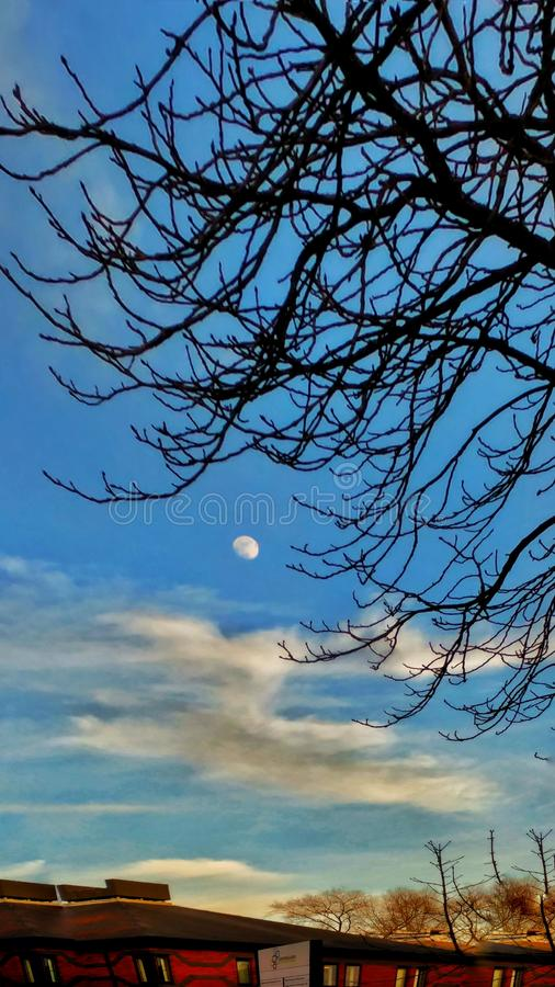 Luna di giorno immagine stock