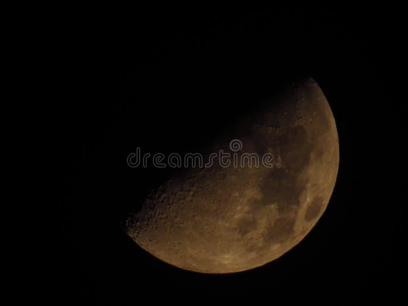 Luna dorata fotografie stock