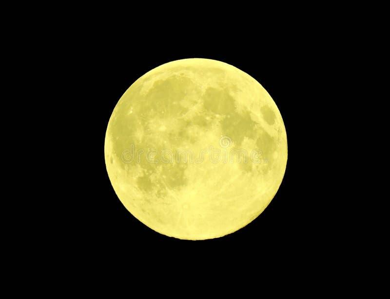 Luna dorata immagine stock libera da diritti