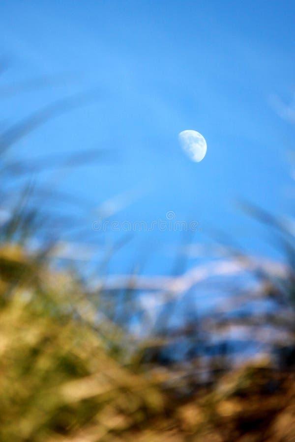 Luna durante día foto de archivo libre de regalías