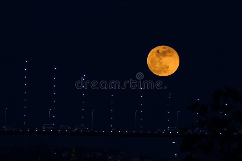 Luna eccellente del sangue blu dietro il ponte di Bosphorus a Costantinopoli, Turke immagini stock libere da diritti