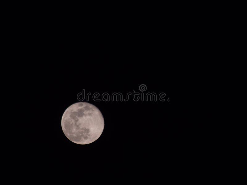 Luna eccellente, luna piena, una foto di 2019 immagini stock libere da diritti