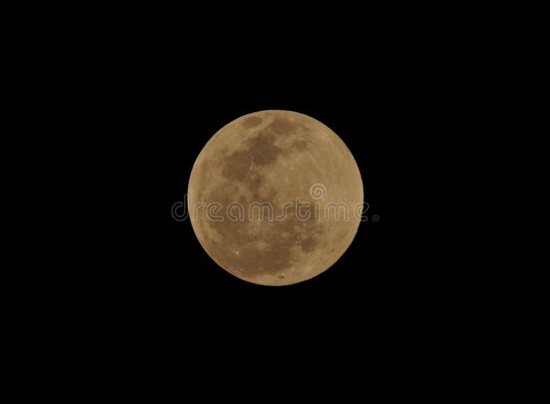 Luna, eclipse lunare di totale veduta da Utila, Honduras immagine stock libera da diritti