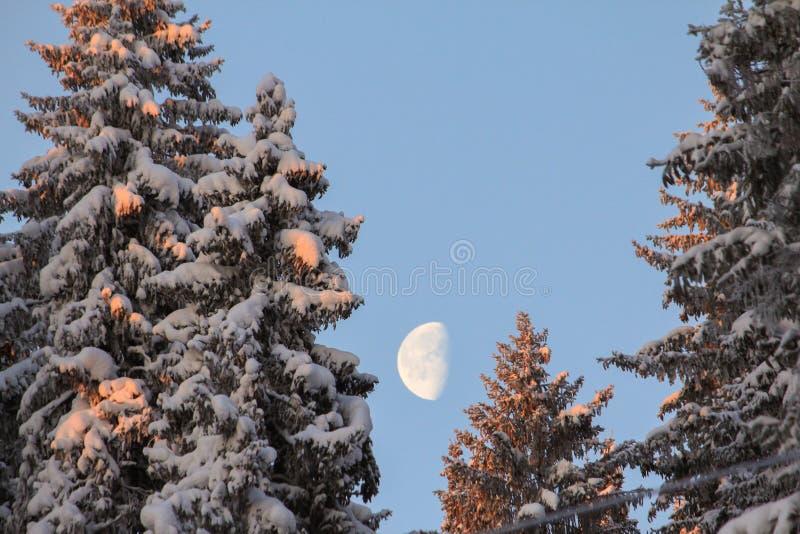luna en la salida del sol imagen de archivo libre de regalías