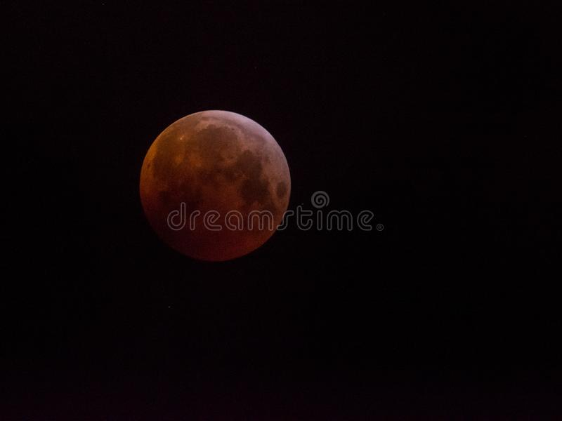 Luna estupenda del lobo de la sangre de enero de 2019 imagen de archivo libre de regalías