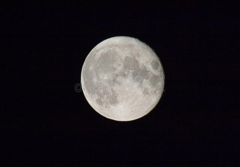 Luna Llena Imágenes de archivo libres de regalías