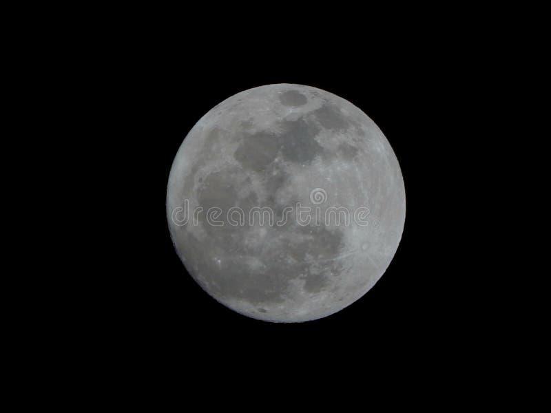 Luna Llena brillante aislada en un cielo nocturno negro natural fotos de archivo