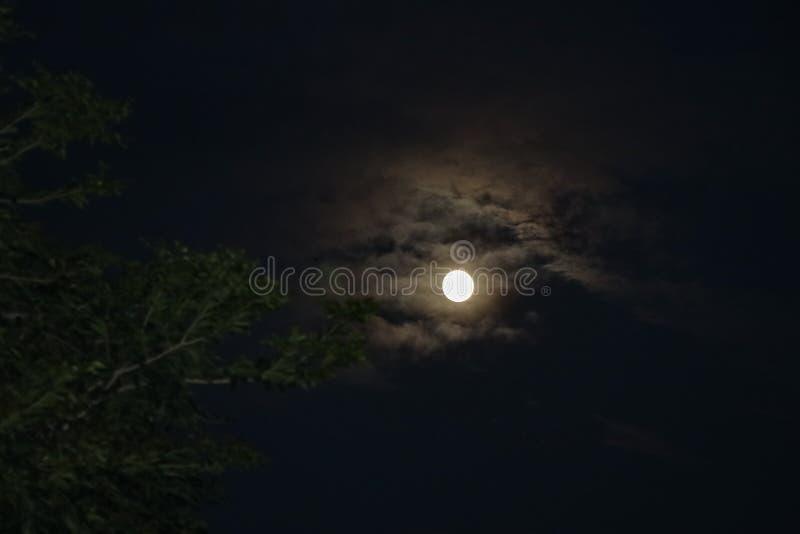 Luna Llena hermosa rodeada con las nubes durante noche fotos de archivo