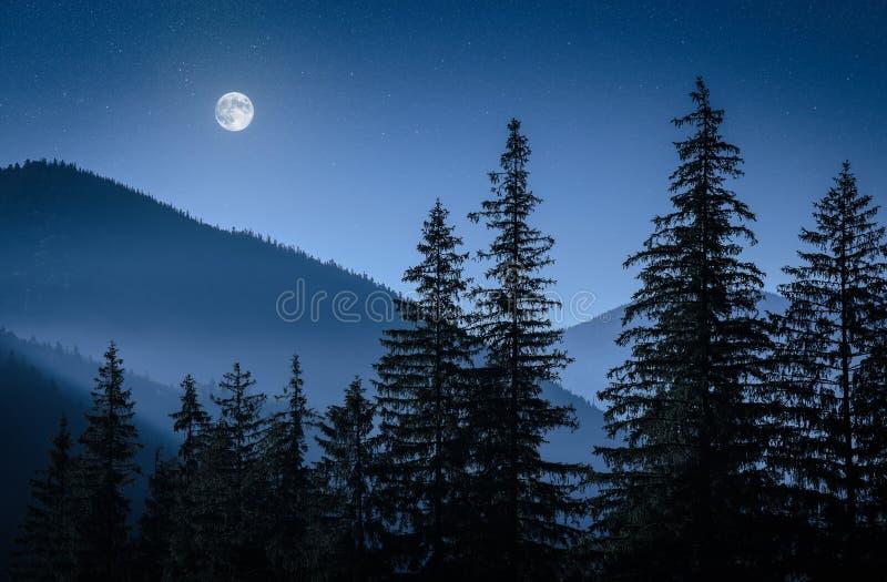Luna mistica fotografie stock libere da diritti