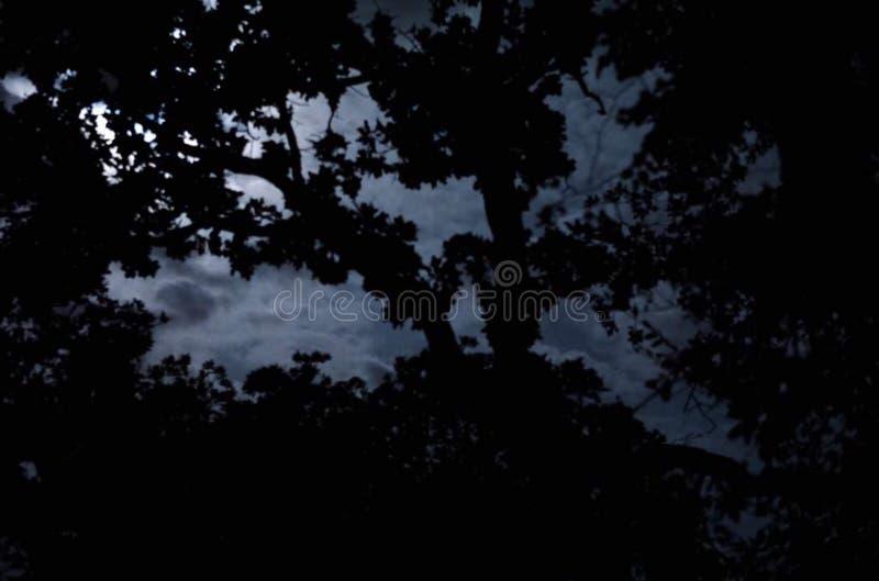 Luna nublada fotos de archivo