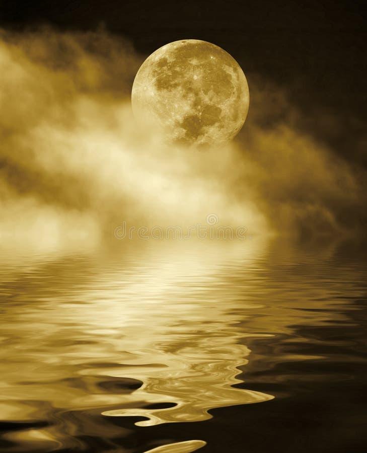 Luna piena alla notte immagini stock