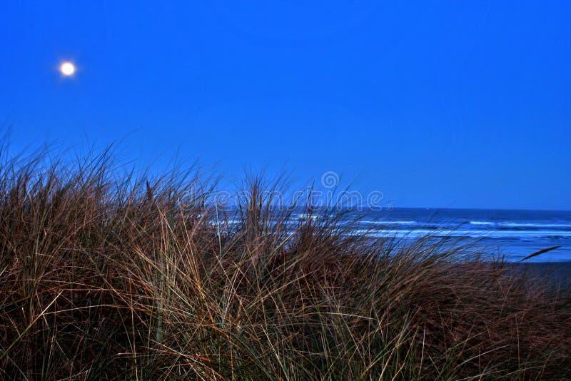 Luna piena alla spiaggia immagine stock libera da diritti