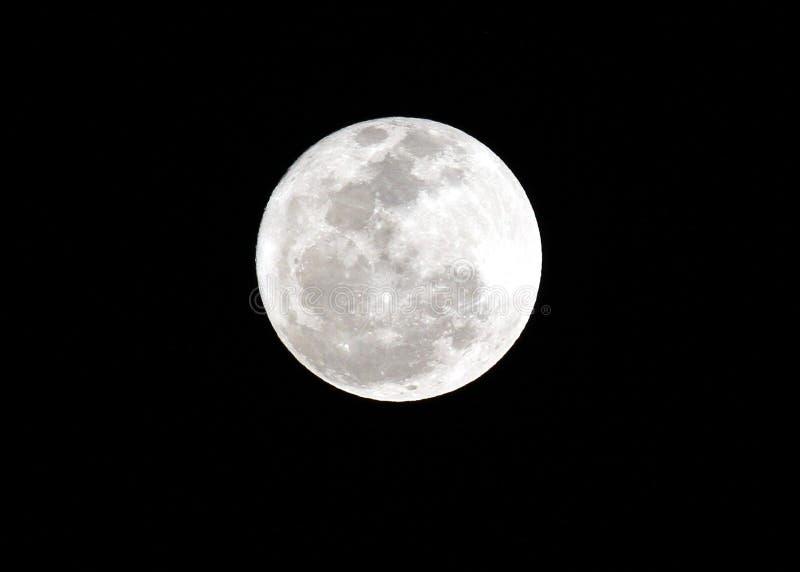 Luna piena dettagliata immagini stock libere da diritti
