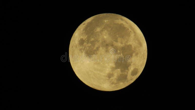 Luna piena dettagliata nel cielo scuro fotografia stock libera da diritti