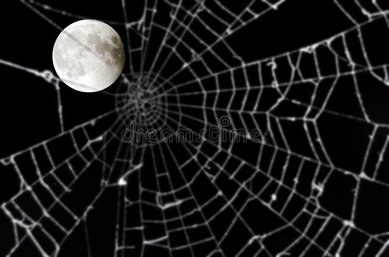 Luna piena e Web di ragno vago fotografia stock libera da diritti